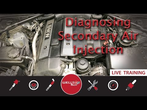 Diagnosing BMW (530i) and GM (4.2L) Secondary Air Injection System Faults - P0410, P0411