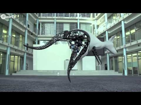 Awesome Robots Inspired By Animals
