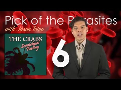 Number 6 - The Crabs