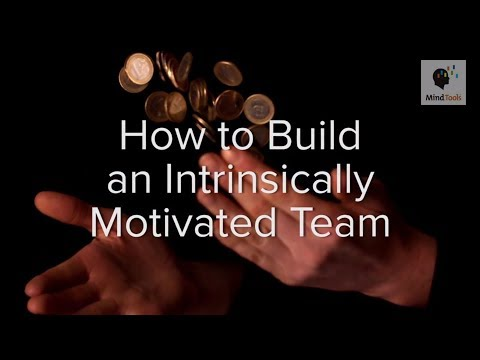 How to Build an Intrinsically Motivated Team