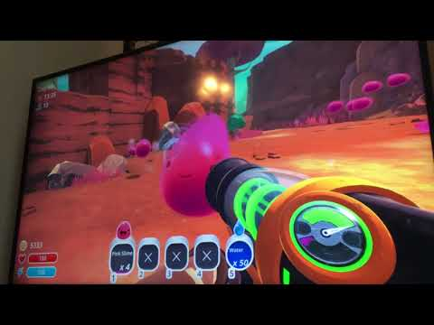 Slime Rancher:How to find pink slime for beginners