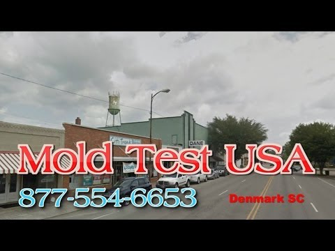 Mold Test USA Denmark SC - Mold Testing and Inspections
