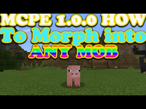 Mcpe 1.0.6 How To Morph Into Any Mob//Command Block//Working Any Version!!!