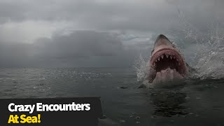 15 Insane moments at sea - The sea can be a SCARY place!