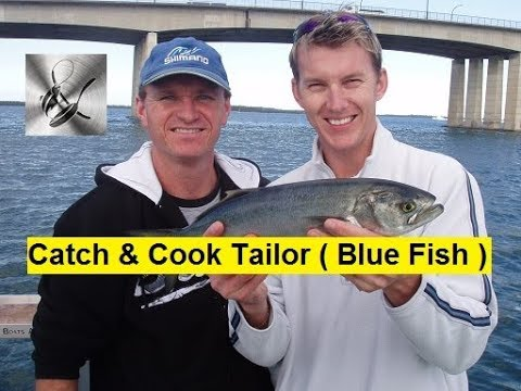 Catch & Cook Tailor | The Hook and The Cook
