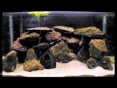 Cool DIY Aquarium Decor Ideas