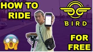 HOW TO RIDE BIRDS FOR FREE!!!