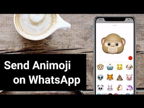 How To Send Animoji in WhatsApp on iPhone X?