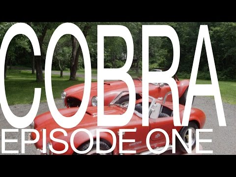 COBRA Build Episode One - Engine replacement