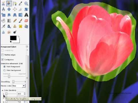 Tutorial GIMP (Dasar) - 02.07 foreground select