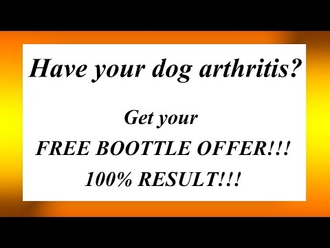 Arthritis in dogs Arthritis in dogs and cats
