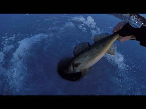 Ice Jigging at Dusk for Walleye