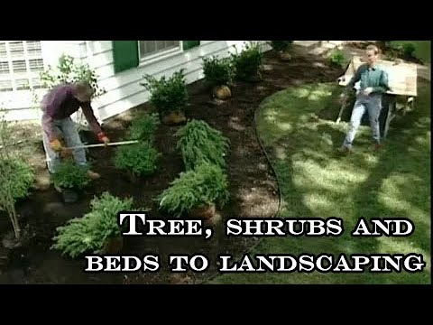 Tree planting, shrubs and beds to landscaping