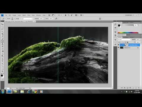 PhotoShop CS4: How to make an image Black & White w/ Color Accents - Part 1