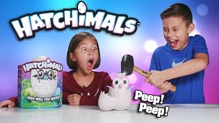 EVAN SMASHED MY HATCHIMALS!!! Surprise Egg - Review & Destroy!