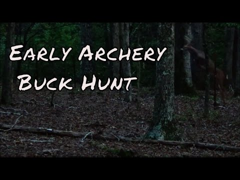 Early Archery Buck Hunt in Amherst, Virginia