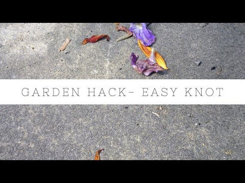 Garden hack - easy knot to tie bamboo canes / sticks together