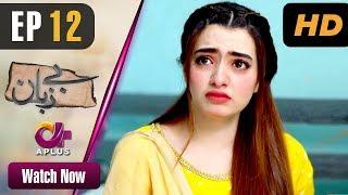 Bezuban - Episode 12 | Aplus Dramas | Usama Khan, Nawal Saeed, Junaid, Mahlaqa | Pakistani Drama