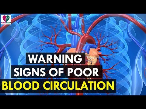 Warning Signs of Poor Blood Circulation - Health Sutra