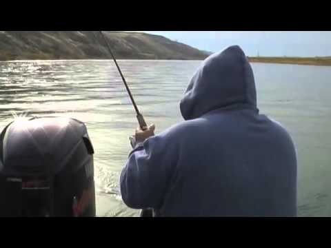 Catching a Native Steelhead on the Columbia River
