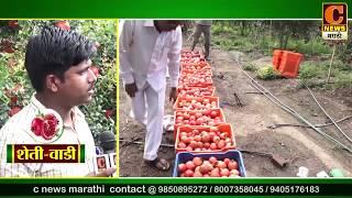 शेतीवाडी - डाळींब शेती आणि मार्गदर्शन