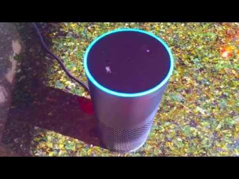 Amazon Echo - How To Change Name / Wake Word