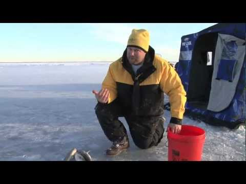 Fish Ed 001 First Ice Walleye