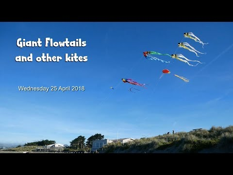 Giant flowtails and other kites