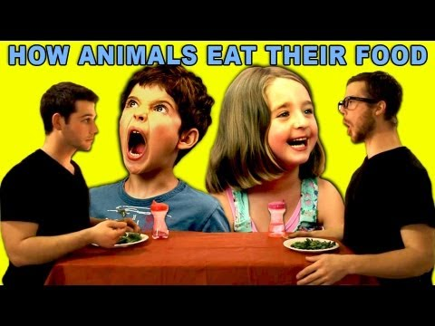 Kids React to How Animals Eat Their Food