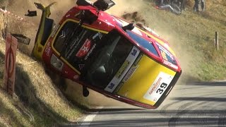 Best of Rally 2016 - Crash, Jumps, Show [HD]