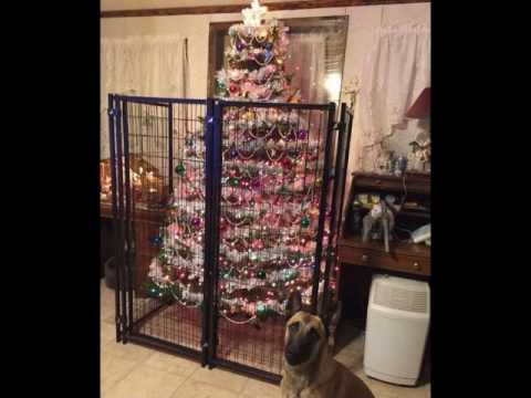 15 Genius People Who Protected Their Christmas Trees From Cats And Dogs