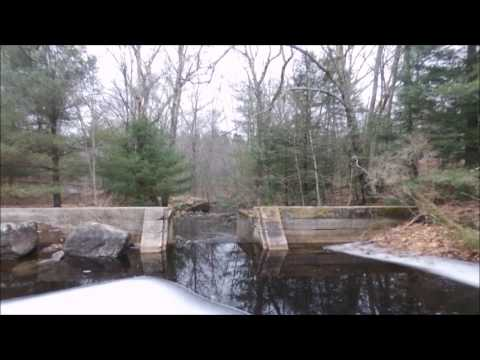 ENDERS STATE FOREST and GAY CITY STATE PARK