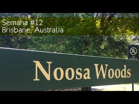 Semana #12 - Brisbane, Australia - Tattoos e Noosa Beach