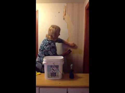 wallpaper removal miracle