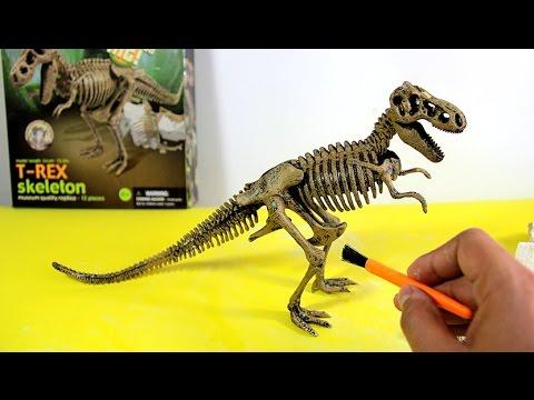 T-Rex Skeleton - Dinosaur excavation kit  | Esqueleto Tiranosaurio Rex de juguete para excavar - 4/7