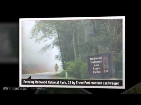 Redwood National Park - California, United States