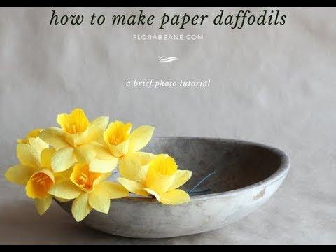 Florabeane Paper Daffodils