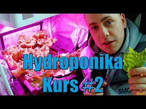 Hydroponika Kurs #2 napowietrznie temperatura wilgotność akcesoria