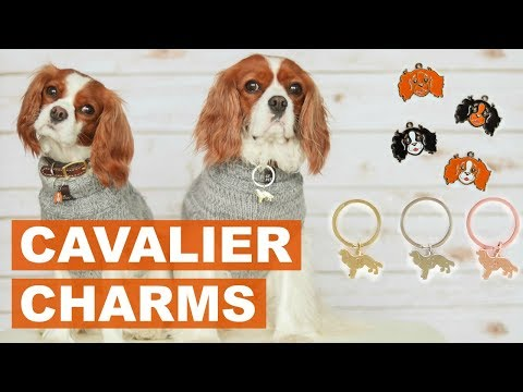 CAVALIER KING CHARLES CHARMS | Dog Tag Keychain for Dog Lovers