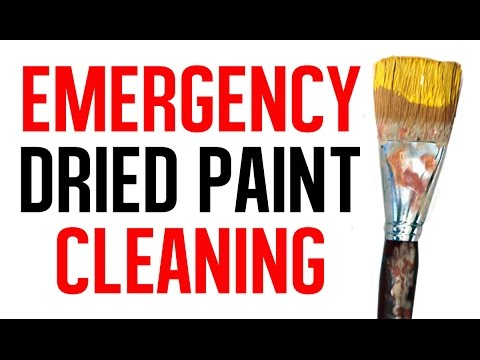 Emergency Dried Paint  Brush Cleaning