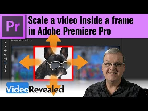 Scale a video inside a frame in Adobe Premiere Pro