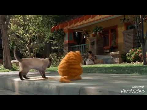 Xxx Mp4 Garfield Bangla Movies Part 4 3gp Sex