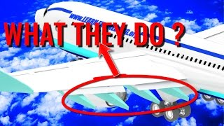 What are Beneath the Airplane Wings ?