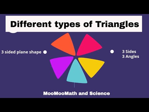 Types of triangles by sides and angles