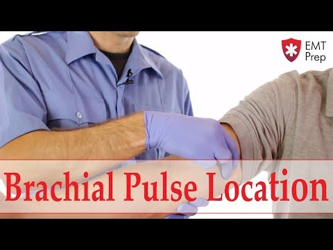 Brachial Pulse Location - EMTprep.com