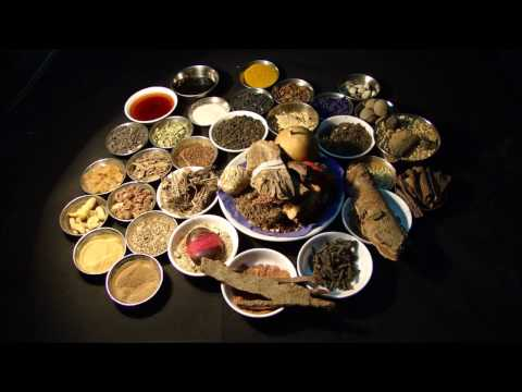 Stage 4 Liver Cancer: Kill Cancer Naturally. Research by Pankaj Oudhia
