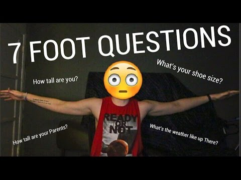 7 FOOT 1 WINGSPAN (TALL QUESTIONS)