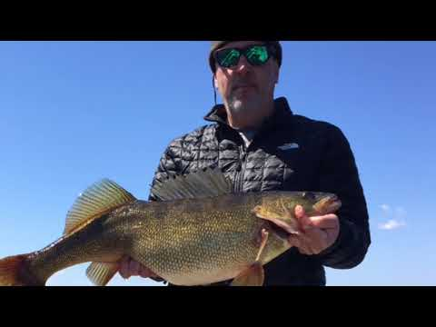 St. Lawrence River angler talks about his state record walleye