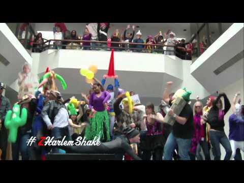 Z Harlem Shake