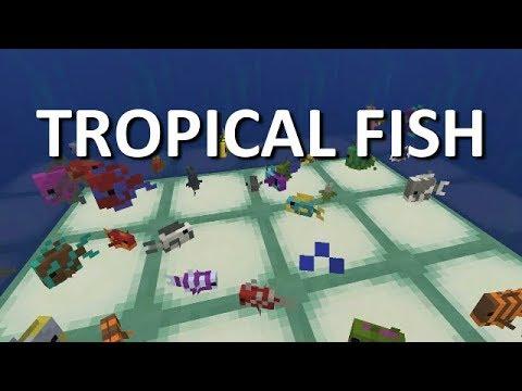 MINECRAFT XBOX ONE AQUATIC BETA TROPICAL FISH